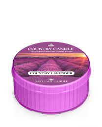 DayLight®-Country Lavender