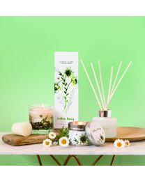Botanic - Cotton Daisy Natural Wax Fishbowl