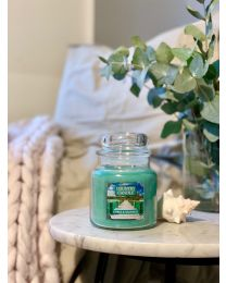 2-Wick M Jar-Citrus & Seagrass