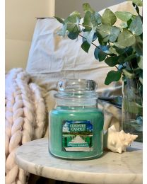 2-Wick L Jar-Citrus & Seagrass